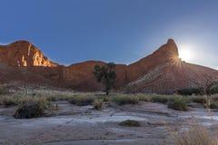 Starburst petrificato di Sun della duna Fotografia Stock Libera da Diritti