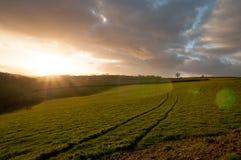 Starburst solnedgång med linssignalljuset över Devon fält Arkivfoton