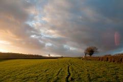 Starburst sunset over fields Stock Images