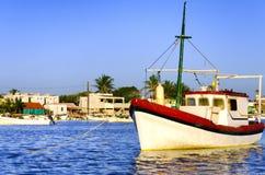 Stare łodzie w Rio Lagartos zdjęcia royalty free