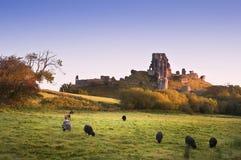 Stare średniowieczne grodowe ruiny w wibrującym lato wschodu słońca krajobrazie im Fotografia Stock