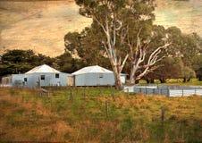 Stare Australijskie barani shearing jaty Obraz Royalty Free