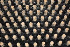 Stare butelki winograd Zdjęcia Stock