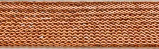 stare czerwieni dachu płytki Fotografia Stock