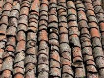 stare dachowe płytki Zdjęcia Stock