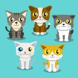 Stare dei gatti del fumetto Immagine Stock