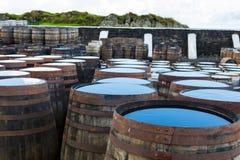 Stare drewniane baryłki i beczki z pojedynczy słodowy Szkockim przy whisky destylarnią w Szkocja obraz stock