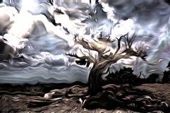 stare drzewo ilustracji