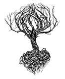 stare drzewo ilustracja wektor