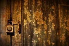 stare drzwi Zdjęcie Stock