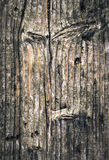 Stare gnarled świerczyn deski Obrazy Stock