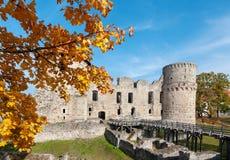 Stare kasztel ruiny z jesieni drzewami na tle obrazy royalty free