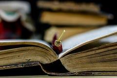 Stare książki i pikantność Wysuszeni pieprze i przepisy kuchenny stary stół obrazy royalty free