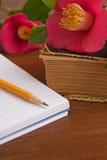 Stare książki z romantycznymi różowymi kwiatami na drewnianym Fotografia Stock