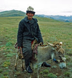 Stare Kyrgyz przejażdżki osioł w Alay dolinie zdjęcia stock