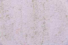 Stare menchie białkująca ścienna tekstura fotografia stock