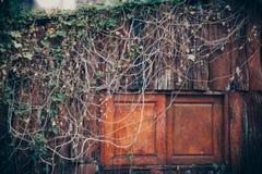 stare okno Obrazy Stock