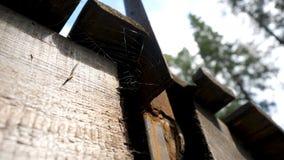 Stare pajęczyny w zaniechanym domu Pająk sieć pod dachem Pajęczyny pod dachem obrazy royalty free