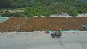 Stare Pickup przejażdżki wzdłuż Mokrej plaży z alg sieciami przy półmrokiem zbiory wideo