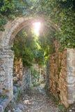 Stare ruiny zakrywać w roślinach obraz stock