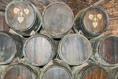 Stare wino baryłki w Codorniu wytwórnii win w Hiszpania Zdjęcie Royalty Free