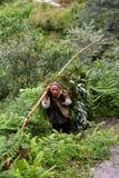 Starego człowieka przewożenia ziele w himalajach Obrazy Royalty Free
