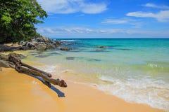 Starego driftwood błękitny denny biały piasek i fala na plaży Zdjęcia Stock