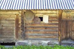 Starego grunge drewniani dom, netto i zobaczyliśmy obwieszenie na ścianie Fotografia Stock