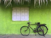 Starego nieociosanego rocznika bicyklu stalowy park wzdłuż świeżego zielonego koloru wa Zdjęcia Royalty Free