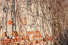 Starego rocznika Czerwona ściana z cegieł Z Rozpryskanym szarość cementu tynku tekstury tłem obraz royalty free