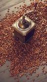 Starego rocznika kawowy młyn na piec gorących fasolach Fotografia Stock