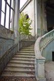 Starego rocznika marmuru ślimakowaty schody przy zaniechanym przerastającym dworem Zdjęcia Royalty Free