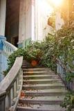 Starego rocznika marmuru ślimakowaty schody przy zaniechanym przerastającym dworem Obrazy Stock