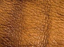 Starego rocznika prawdziwego mi?kkiego br?zu tekstury rzemienny t?o, odg?rna warstwa z pores i narysy, makro-, w g?r? fotografia stock