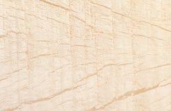 Starej Lite białej drewnianej tekstury naturalny deseniowy tło obraz royalty free