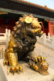 Stares to the main temple loin stands guard. The forbidden kingdom china Beijing golden loin Stock Photos