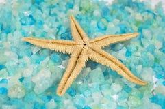 starfish минеральных солей Стоковые Фото
