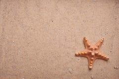 starfish песка предпосылки Стоковые Изображения