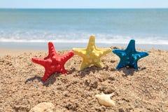 starfish пляжа цветастые Стоковое Фото