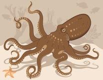 starfish рифа восьминога коралла Бесплатная Иллюстрация
