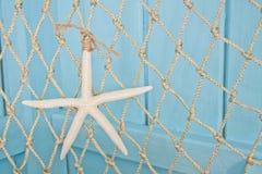 starfish сини предпосылки Стоковые Фотографии RF