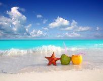 starfish сока кокоса коктеилов пляжа стоковое фото rf