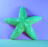 Starfish. On blue background, abstract stock images