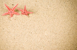 Free Starfish Stock Photos - 13650783