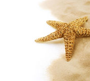 Starfish. On the Sand border design. Vacation concept royalty free stock photo