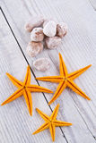 Starfish. Composition of starfish and pink stones royalty free stock photo