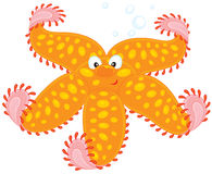 Starfish. Vector clip-art illustration of a red sea-star Royalty Free Stock Images