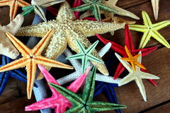 Starfish. A group of colorful starfish on a wooden pier Stock Photography