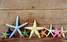 Free Starfish Stock Photos - 26316513