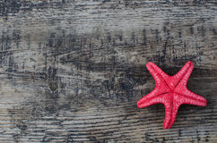 Starfish. On a wooden background with a copyspace Stock Images